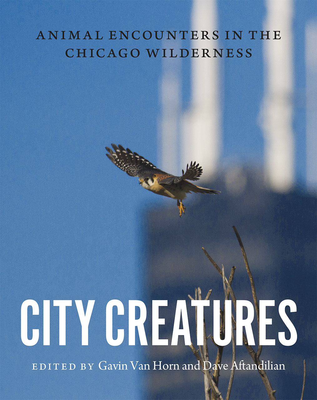City Creatures Anthology
